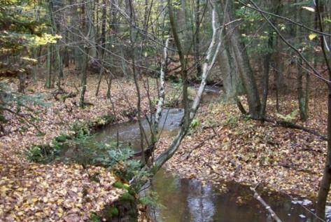 Sieradowicki Park Krajobrazowy
