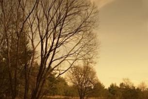 Rzeka Kamienna