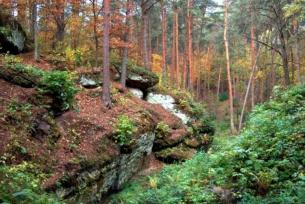 Rezerwaty na terenie powiatu ~ Rezerwat Skały w Krynkach