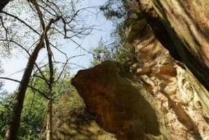 Pomniki przyrody ~ Ściana skalna w Krynkach