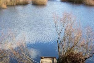 Zbiorniki wodne ~ Oczko w Marcinkowie