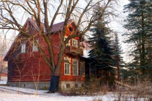 Modrzewiowy dom w Brodach