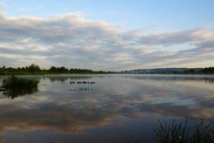 Zbiorniki wodne ~ Zalew w Brodach