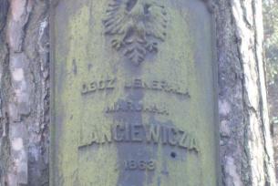 Polana Langiewicza