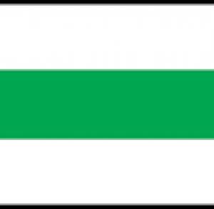 zielony pieszy Lubienia - Marcule (łącznik)