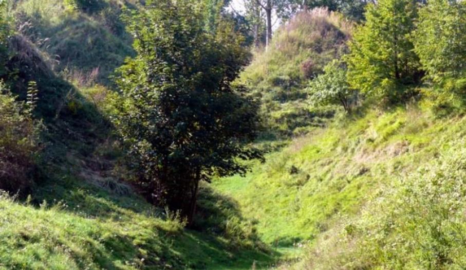 Wąwóz Rocław